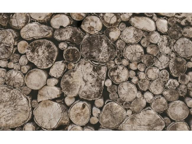 柚木木材特性:短轮环和长轮环